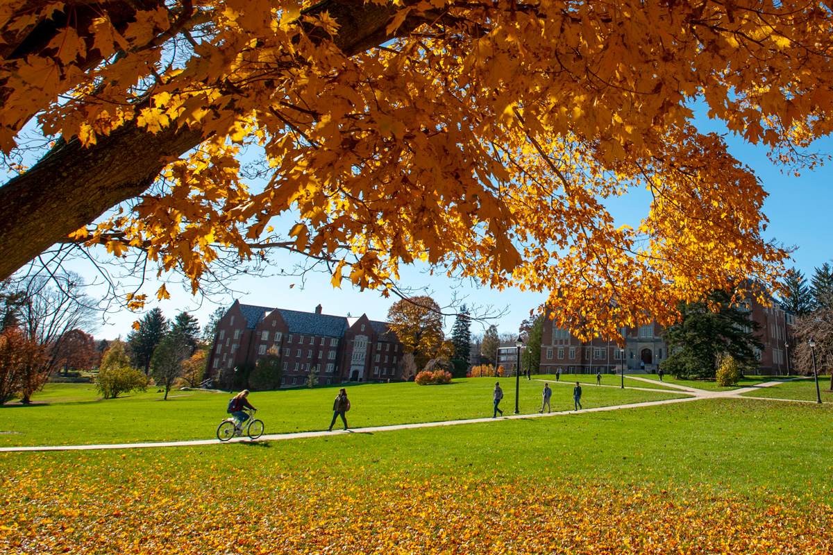 View of the campus in the fall